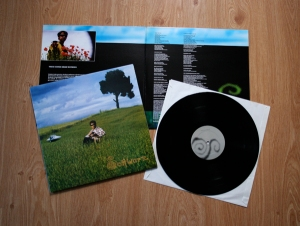 Schwarz, These Songs Mean Nothing - LP 12""