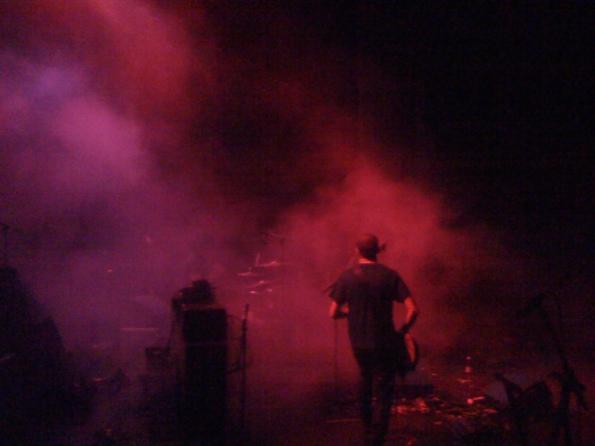schwarz-tannedtin-2013